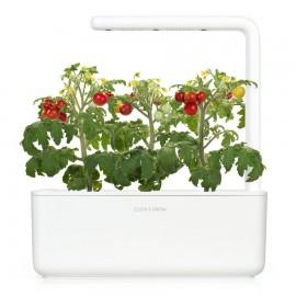 Smart Garden - Sadzonka (Pomidory koktajlowe)
