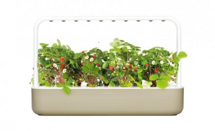 Smart Garden 9- inteligentny ogród Clik&Grow