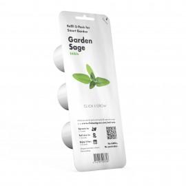Smart Garden - Sadzonka (Szałwia)
